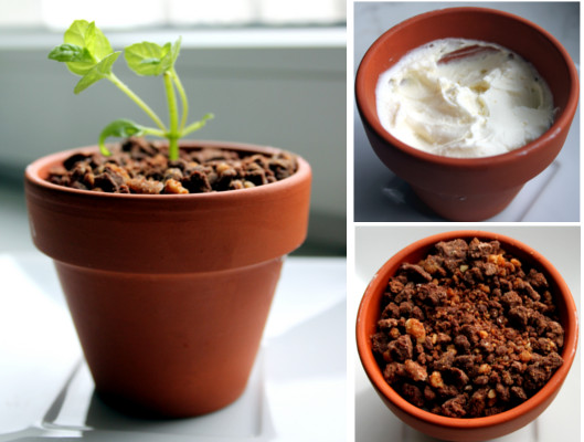 Deser Z Jadalną Ziemią Blog Kulinarny Dare To Cook