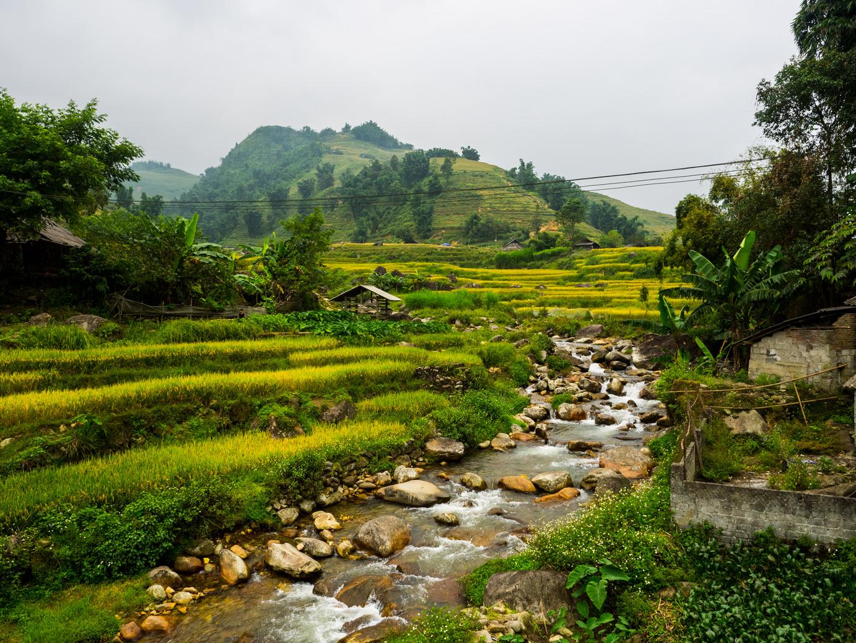 Sapa Wietnam